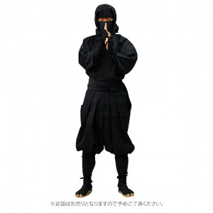 ninja-stand-up