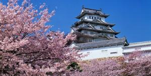 sakura-castle